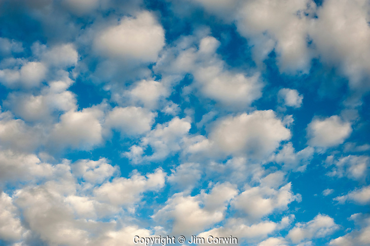 Cumulus Fractus clouds with patterns of smaller clouds