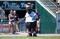 Lehigh Valley Iron Pigs mascot Ferrous entertains the fans prior to the game against the Durham Bulls at Coca-Cola Park on July 30, 2017 in Allentown, Pennsylvania.  The Bulls defeated the IronPigs 8-2.  (Brian Westerholt/Four Seam Images)