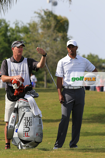 Tiger Woods (USA)on the 6th during day three at the WGC Cadillac championship at Doral Golf Resort & Spa,Doral, Florida,USA..Picture: Fran Caffrey / www.golffile.ie ..