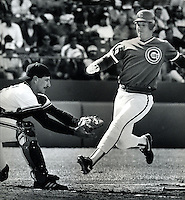 San Franciso Giant catcher Bob Brenly ready to tag out Chicago Cub Jody Davis on attempt squeeze play.<br />