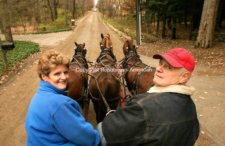 SOUTHBURY, CT-- 12 NOVEMBER 2007--111207JS03-Carol Morris and her husband Glen Morris of Southbury take their team of Morgan horses out for a walk with their hay wagon on Monday. The Morris' have offered hayrides in the community for 41 years. The couple will be closing their operation down after the holidays. <br /> Jim Shannon / Republican-American