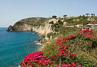 ITA, Italien, Kampanien, Ischia, vulkanische Insel im Golf von Neapel, Kueste bei Sant' Angelo | ITA, Italy, Campania, Ischia, volcanic island at the Gulf of Naples, coastline near Sant' Angelo