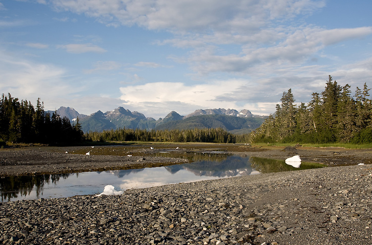 Alaska, Prince William Sound, Columbia Bay, Chugach Mountains, Heather Island,
