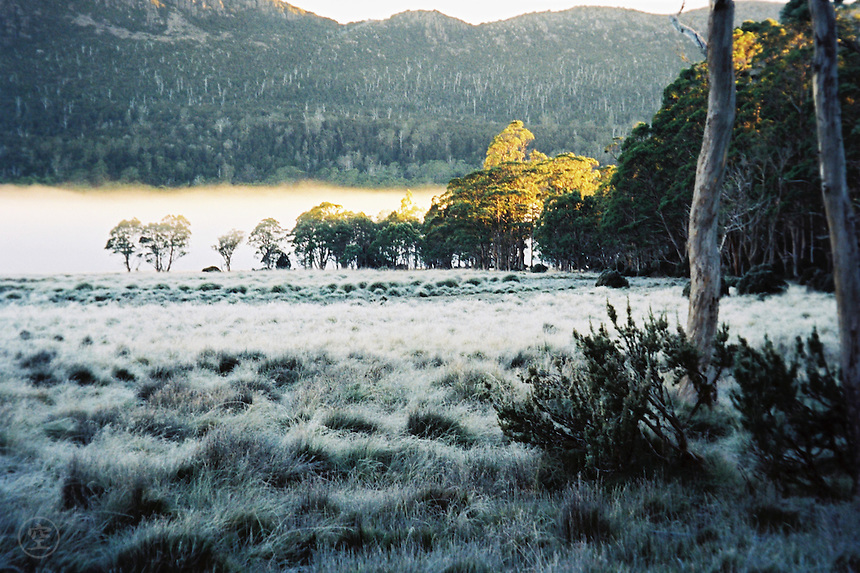A frosty morning on the Overland Track, Cradle Mountain Lake St Clair National Park, Tasmania, Australia.