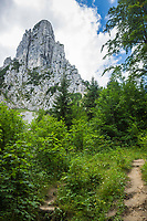 Deutschland, Bayern, Chiemgau, Ruhpolding: Aufstieg zur Hoerndlalm mit der Hoerndlwand, die zum Hochkienbergstock gehoert | Germany, Bavaria, Chiemgau, Ruhpolding: hiking trail to alpine pasture Hoerndlalm with mountain Hoerndlwand