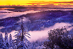 Clearing winter storm, fresh snowfall at sunset, Panther Creek, El Dorado National Forest, Amador County, Calif.