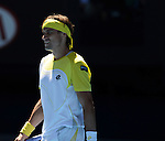 David FERRER (ESP) wins at Australian Open in Melbourne Australia on 21st January 2013