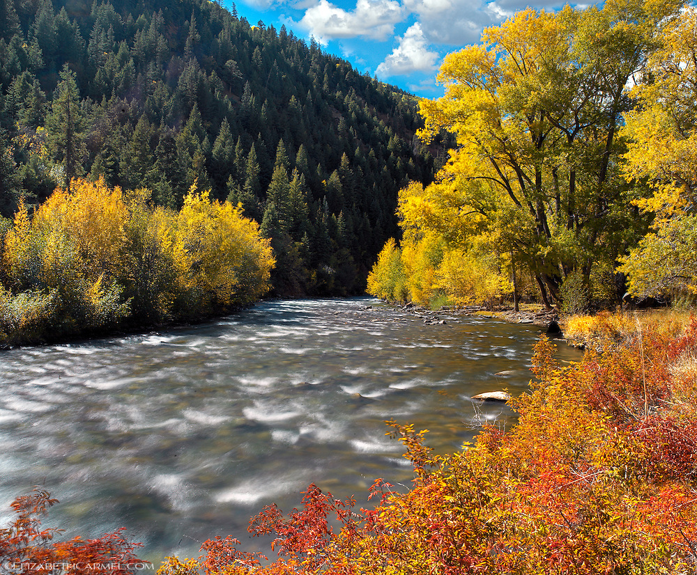 Autumn River, Colorado
