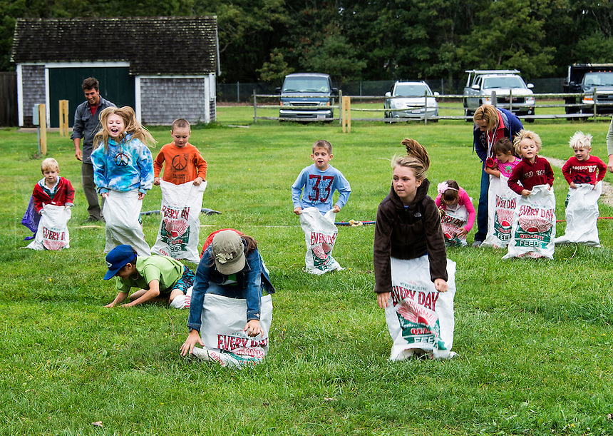 Sack race at the Martha's Vineyard Harvest fest, West Tisbury, Massachusetts, USA