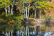 Lake Massabesic Watershed during the autumn months in Auburn, New Hampshire USA