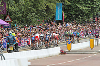LONDON - AUGUST 07: Men's Olympic Triathlon, Hyde Park, London, UK. August 07, 2012. (Photo by Richard Goldschmidt) /NortePhoto.com<br /> <br /> **SOLO*VENTA*EN*MEXICO**<br /> **CREDITO*OBLIGATORIO** <br /> *No*Venta*A*Terceros*<br /> *No*Sale*So*third*<br /> *** No Se Permite Hacer Archivo**<br /> *No*Sale*So*third*