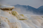 Mammoth Hot Springs is a popular tourist spot in Yellowsotne National Park.