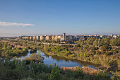 Ballona Wetlands is one of the last remaining wetlands in the Los Angeles Basin, Playa Vista, Los Angeles, California, USA