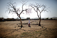 two dead tries stand in the compound of the Cluster resource Center of Lafaissa, Somali Region, Ethiopia on Monday November 9 2009. .The Lafaissa facility is supported by the British non governmental organization Save the Children UK..