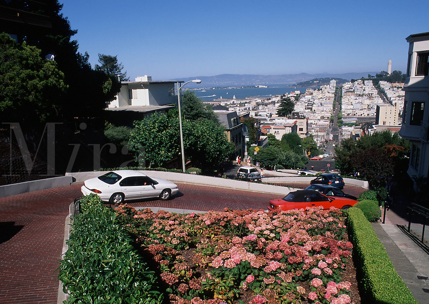 Overview of the famous, steep curved Lombard Street roadway with the San Francisco skyline in the background. California.