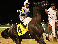 LOUISVILLE, KY - JUNE 30: Limousine Liberal (Robby Albarado) wins the 8th running of the Kelly's Landing Stakes at Churchill Downs, Louisville, Kentucky. Owner Katherine G. Ball, trainer Ben Colebrook. By Successful Appeal x Gift of Gab (In Excess) (Photo by Mary M. Meek/Eclipse Sportswire/Getty Images)