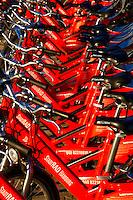 IGS Wilhelmsburg: EUROPA, DEUTSCHLAND, HAMBURG, (EUROPE, GERMANY), 19.10.2012: Verleihstadtion des Hamburger Stadtrad in der Hafencity Hamburg