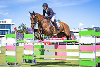 AUS-Andrew Cooper rides Tasman Park Ovation during the CCI4* Showjumping. Final-4th. 2017 AUS-Mitsubishi Motors Australian International 3 Day Event. Victoria Park, Adelaide. Sunday 19 November. Copyright Photo: Libby Law Photography