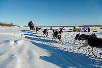 Rick Casillo runs down the Yukon River on his way into the Galena checkpoint on Thursday March 12, 2015 during Iditarod 2015.  <br /> <br /> (C) Jeff Schultz/SchultzPhoto.com - ALL RIGHTS RESERVED<br />  DUPLICATION  PROHIBITED  WITHOUT  PERMISSION