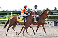 Flying Trip on post parade for The Princess Rooney Handicap (G1), Calder Race Course, Miami Gardens Florida. 07-07-2012.  Arron Haggart/Eclipse Sportswire.