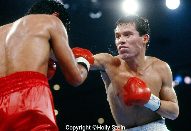Julio Cesar Chavez v. Jose Luis Ramirez..WBC and WBA Lightweight title. Chavez W, fight stopped in 11th round, out of 12.