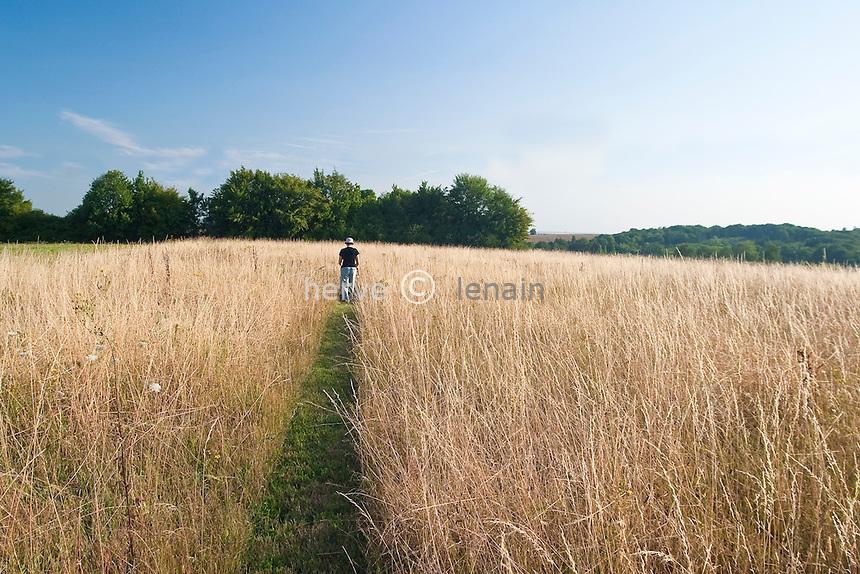 création d'une allée dans la prairie par passage de la tondeuse à gazon // creation of a path in the meadow by passing the lawnmower