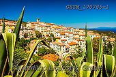 Tom Mackie, LANDSCAPES, LANDSCHAFTEN, PAISAJES, photos,+Europa, Europe, European, Island of Elba, Italia, Italian, Italy, Rio nell'Elba, Tom Mackie, Toscana, Tuscan, Tuscany, hillto+p, horizontal, horizontals, pattern, patterns, town, village, yucca,Europa, Europe, European, Island of Elba, Italia, Italian+Italy, Rio nell'Elba, Tom Mackie, Toscana, Tuscan, Tuscany, hilltop, horizontal, horizontals, pattern, patterns, town, villa+ge, yucca+,GBTM170785-1,#l#, EVERYDAY
