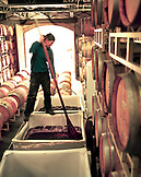 USA, California, an assistant winemaker punches down grapes at the Nevada City Winery in Nevada City, Gold Country