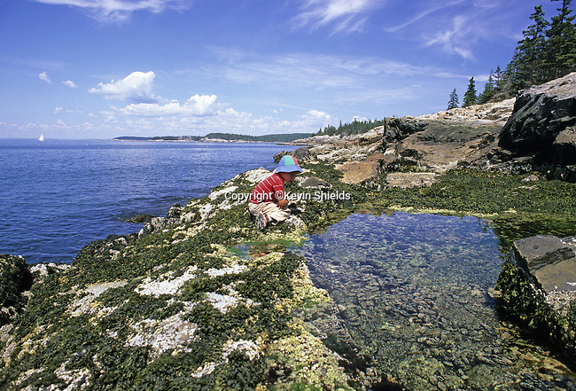 Small boy at the edge of a tide pool at Acadia National Park, Isle Au Haut, Maine, USA