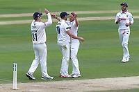 Jamie Porter of Essex celebrates taking the wicket of Sean Ervine during Essex CCC vs Hampshire CCC, Specsavers County Championship Division 1 Cricket at The Cloudfm County Ground on 21st May 2017