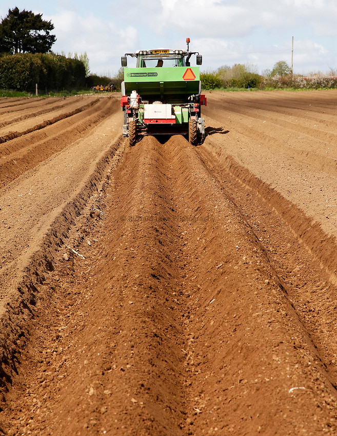 Photo: Richard Lane/Richard Lane Photography. Potato planting near South Petherton, Somerset. 13/04/2014.