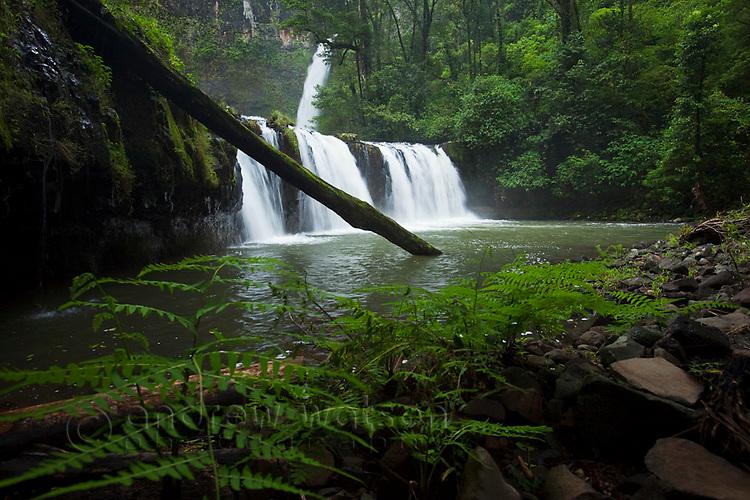 Nandroya Falls in Wooroonoonan National Park.  Atherton Tablelands, Queensland, Australia