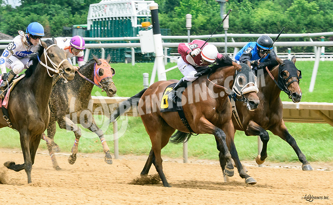 Barnards Galaxy winning at Delaware Park on 6/8/17