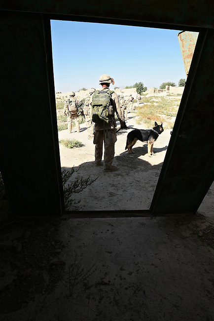 Canadian soldiers with the Royal 22nd Regiment search a compound for Taliban weapons and supplies in the village of Zalakhan in Kandahar province, Afghanistan. The village was mostly abandoned because of past fighting, and Taliban fighters had been using it to fire mortars at a nearby Canadian base. Aug. 7, 2009 DREW BROWN/STARS AND STRIPES