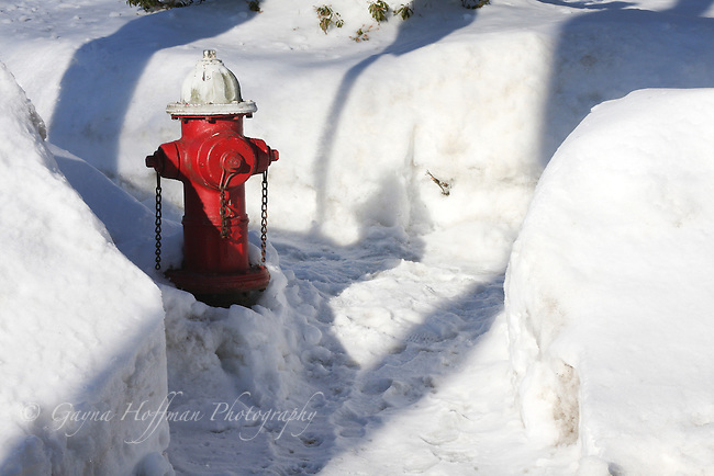 Fire hydrant in shoveled walk beside street.