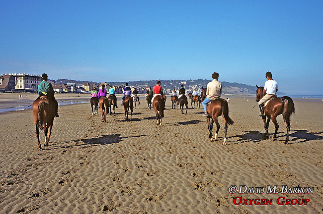 Riding Horses On Beach Along