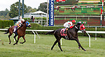 Year of the Kitten (no. 8) wins the Race 8, Sep. 2, 2018 at the Saratoga Race Course, Saratoga Springs, NY.  Ridden by Jose Ortiz, and trained by Michael Maker, Year of the Kitten finished 2 1/4 lengths in front of Double Deep (No. 10).   (Bruce Dudek/Eclipse Sportswire)
