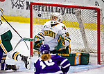 2020-02-02 NCAA: Holy Cross at Vermont Women's Ice Hockey