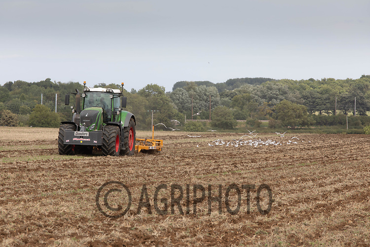 23.7.2020 Subsoiling fallow land  <br /> ©Tim Scrivener Photographer 07850 303986<br />      ....Covering Agriculture In The UK.
