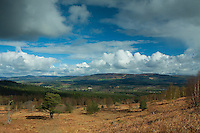 Deeside from Scolty Hill, Banchory, Aberdeenshire