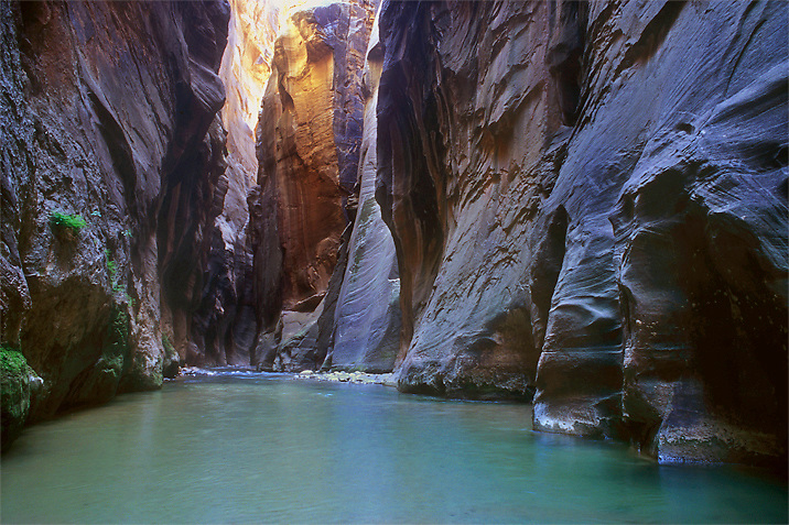 A view downstream in the Virgin River Narrows, Zion National Park Utah.