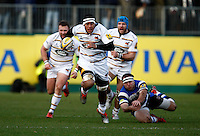 Bath v Wasps 20150110