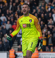 Bournemouth's Artur Boruc <br /> <br /> Photographer David Horton/CameraSport<br /> <br /> The Premier League - Bournemouth v Wolverhampton Wanderers - Saturday 23 February 2019 - Vitality Stadium - Bournemouth<br /> <br /> World Copyright © 2019 CameraSport. All rights reserved. 43 Linden Ave. Countesthorpe. Leicester. England. LE8 5PG - Tel: +44 (0) 116 277 4147 - admin@camerasport.com - www.camerasport.com