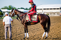 BALTIMORE, MD - MAY 18: Classic Empire and trainer Mark Casse stand on track after training in preparation for the Preakness Stakes at Pimlico Race Course on May 18, 2017 in Baltimore, Maryland.(Photo by Douglas DeFelice/Eclipse Sportswire/Getty Images)