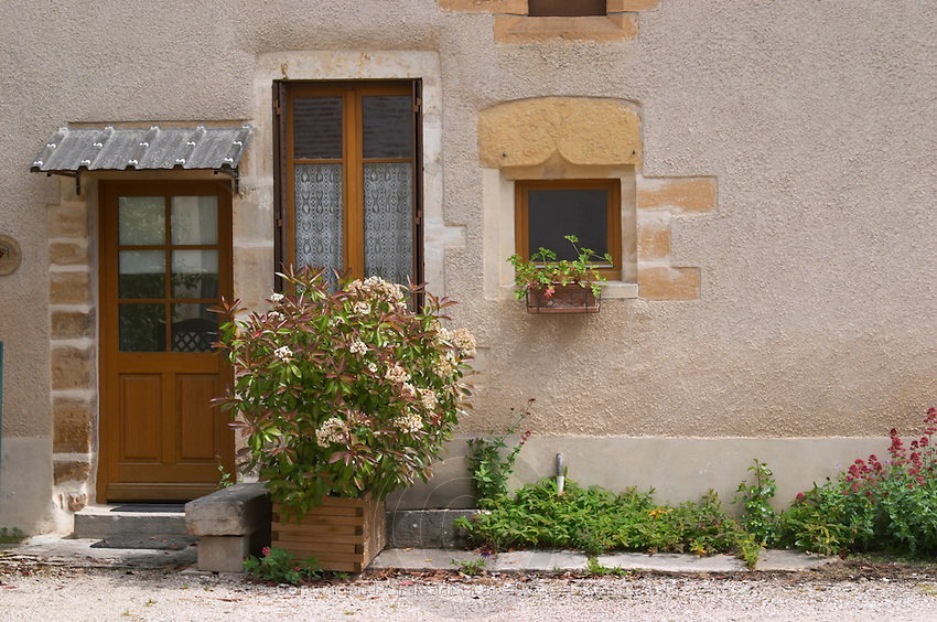 house in the town pernand-vergelesses cote de beaune burgundy france