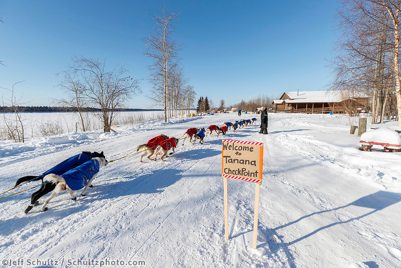 Peter Reuter runs down the road and into the Tanana checkpoint during the 2017 Iditarod on Wednesday afternoon March 8, 2017.<br /> <br /> Photo by Jeff Schultz/SchultzPhoto.com  (C) 2017  ALL RIGHTS RESERVED