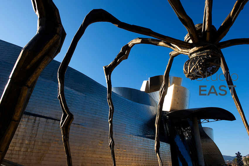 Louise Bourgeois' Maman spider sculpture stands in front of Guggenheim Museum in Bilbao, Spain, on December 27, 2011. The Guggenheim Museum Bilbao is a museum of modern and contemporary art, designed by architect Frank Gehry, covered by reflective titanium panels resembling fish scales. Maman is a nine metres high steel and marble sculpture. Photo by Lucas Schifres/Pictobank