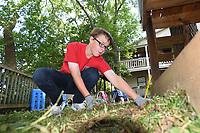 NWA Democrat-Gazette/FLIP PUTTHOFF<br />Nicholas Pleiman, 14, a member of the Young Men's Service League, clears weeds Saturday Sept. 9 2017 at Restoration Village in Little Flock.