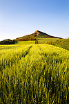 Roseberry Topping on a Summer Evening