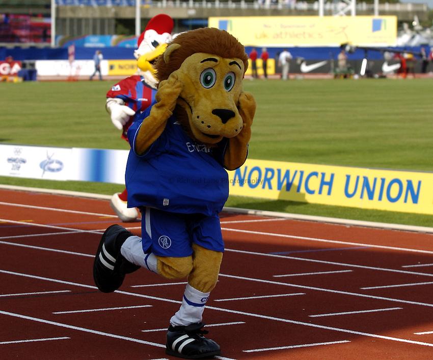 Photo: Richard Lane..Norwich Union London Grand Prix Athletics at Crystal Palace. 30/07/2004..Mascots race, Stamford the Lion wins.